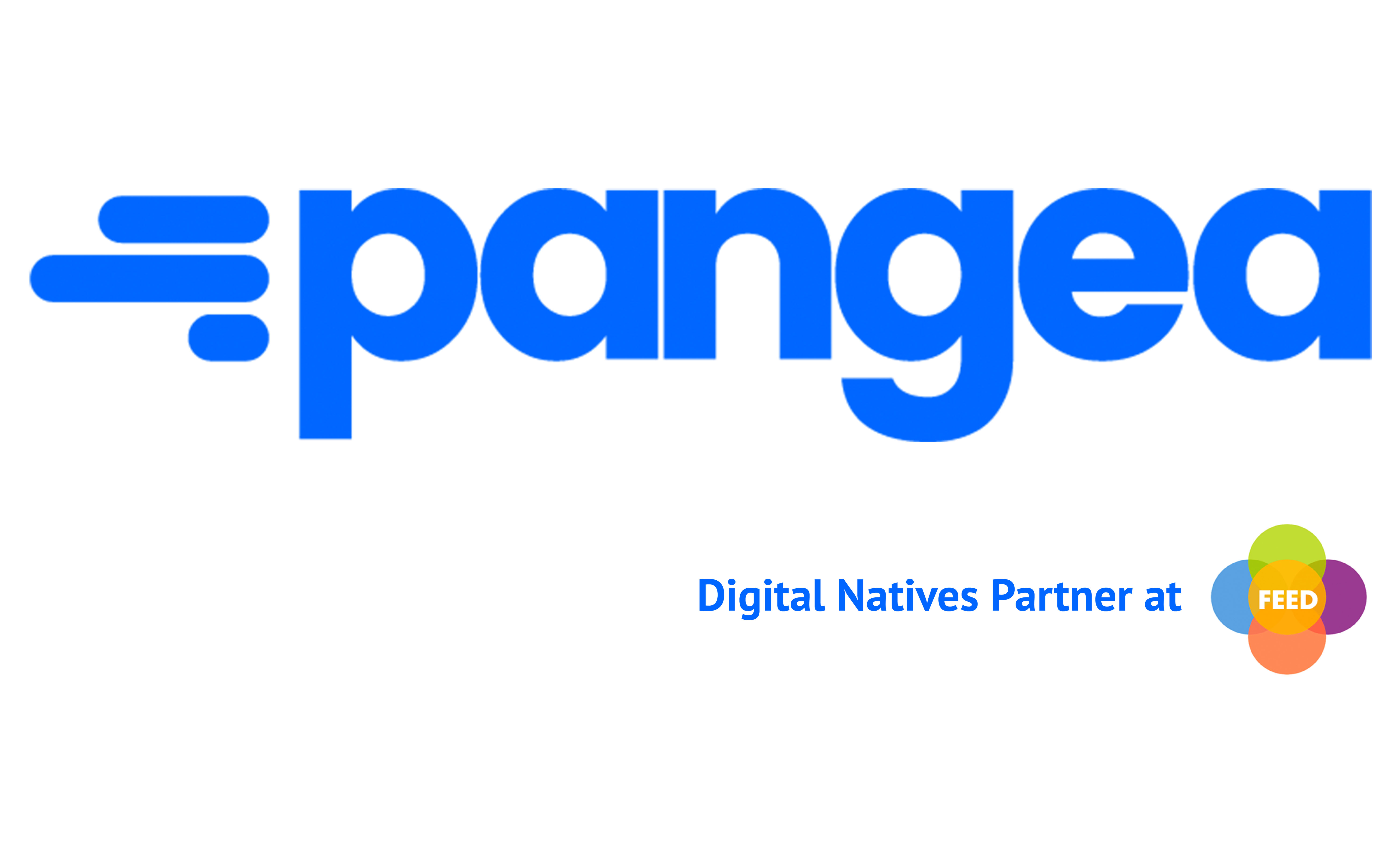 pangea-dnpartner-azul